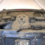 arta masinilor murdare, dirty car art