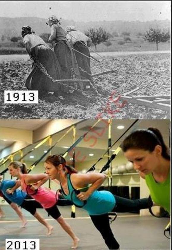 exercitii fizice 1913-2013