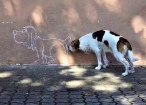 ciine mirosind fundul unui desen pe perete